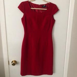 TAHARI Shift Dress, size 2